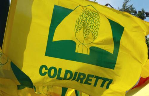 Covid: Coldiretti Campania, 339 piccoli comuni a distanziamento garantito